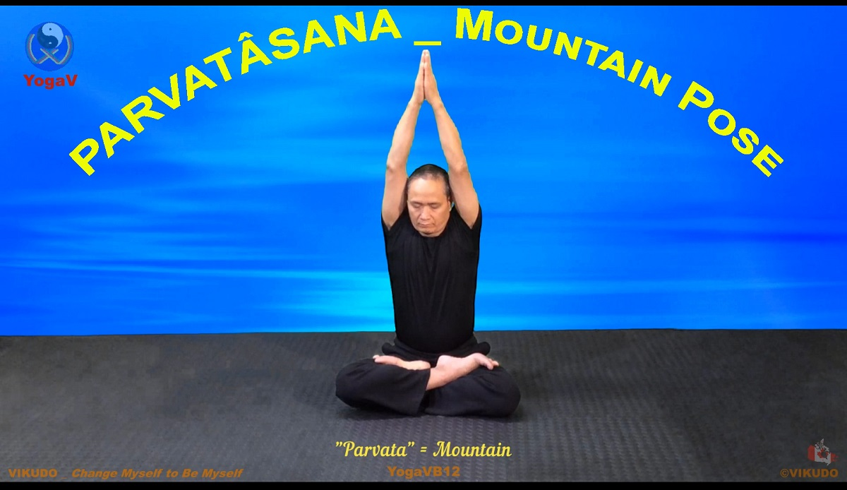yoga vikudo, yogav,, mountain pose