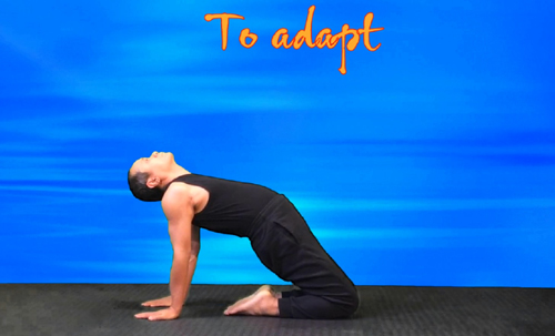 To Camel pose practice. Hands on the floor back, chest up, relax your head freely