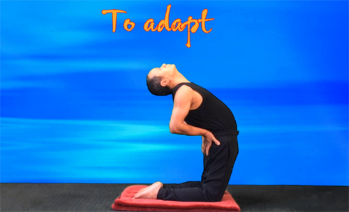 To Camel pose practice. Hands on hips, chest up. VIKUDO
