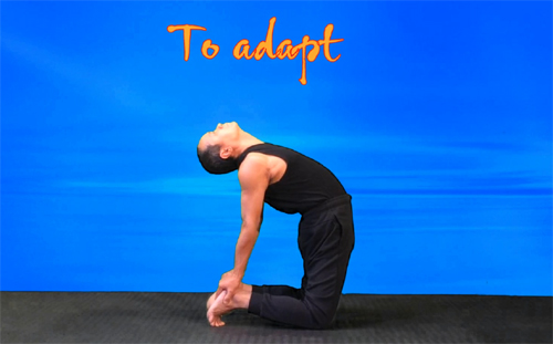 To Camel pose practice. Hands put on the raised heels. VIKUDO