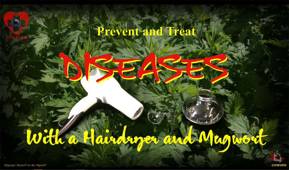 Acuheat V2 _ Prevent and treat diseases with a hairdryer and mugwort