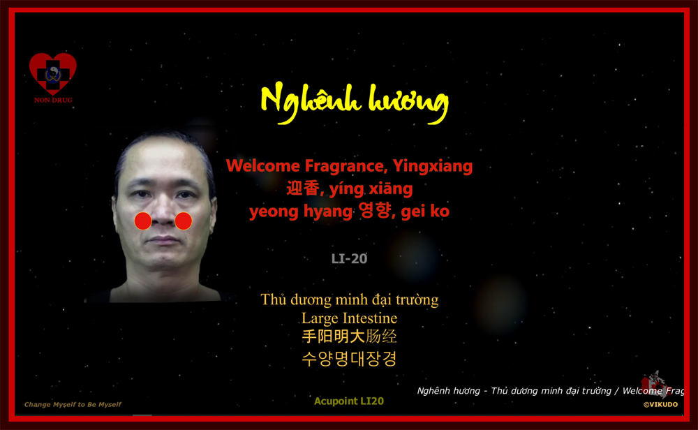 Acupoint LI20 _ Welcome Fragrance, Yingxiang - Large Intestine _ LI-20